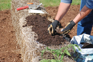 Planting_a_Straw_Bale_Garden_photocredit_MelindaMyersLLC